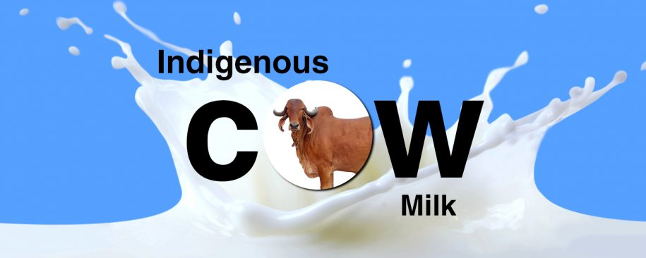 Indigenous Desi Cows Milk