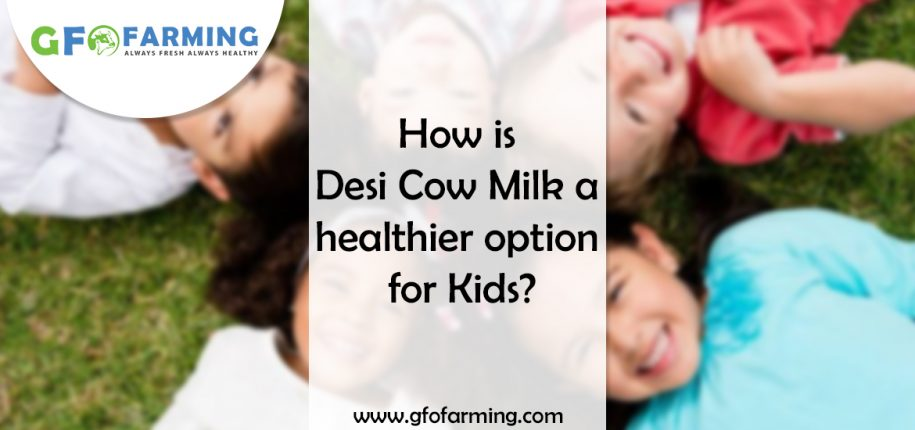 Desi Cow Milk for Kids