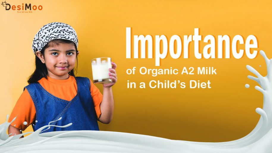 Desi Cow Milk in Gurgaon, Organic A2 Milk In Gurgaon