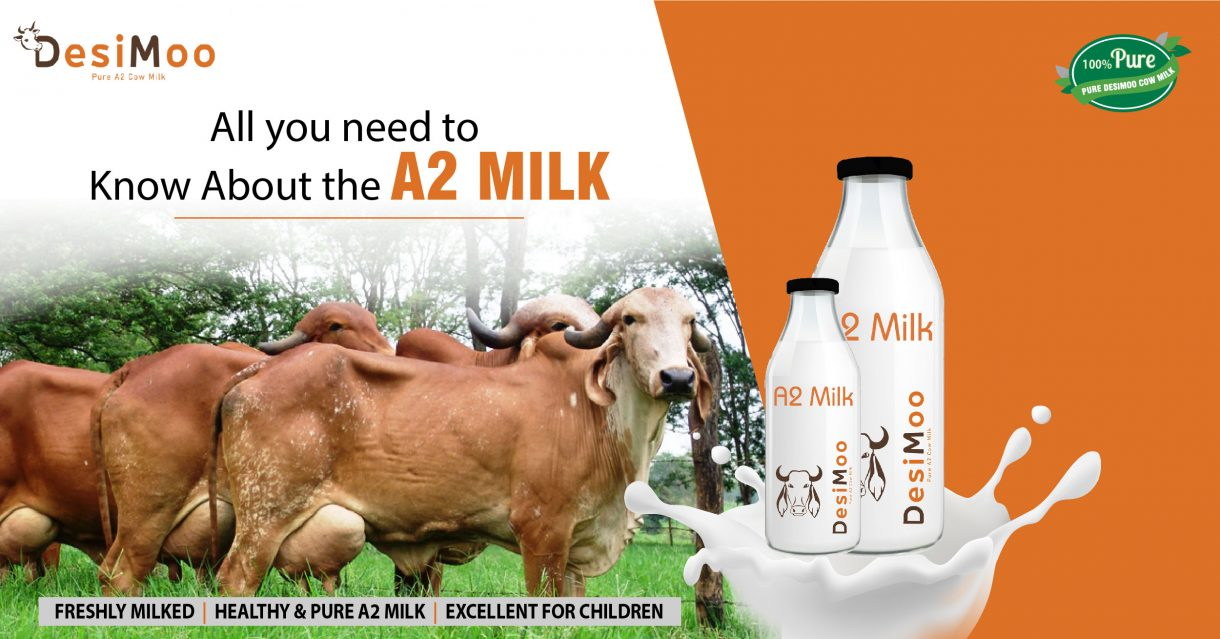 A2 Milk Suppliers in Gurgaon