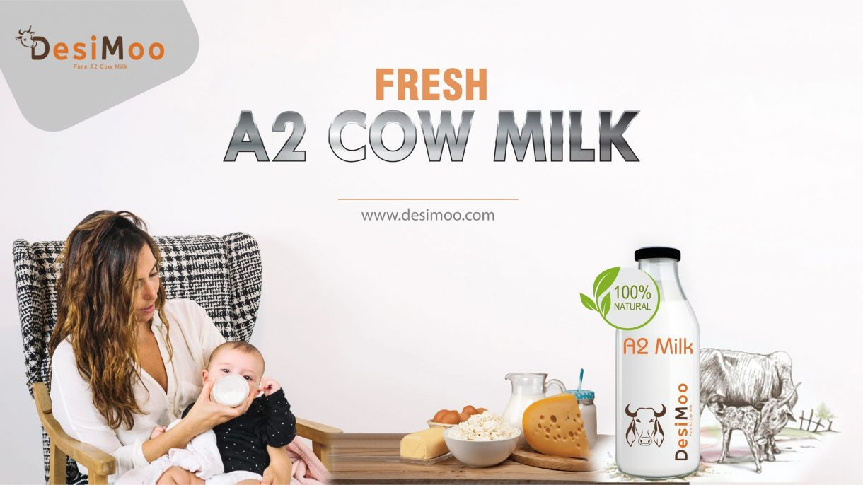 Fresh A2 Cow Milk in Gurgaon, A2 Milk Gurgaon, A2 Milk In Gurgaon, A2 Milk Price In Gurgaon, Best A2 Milk In Gurgaon