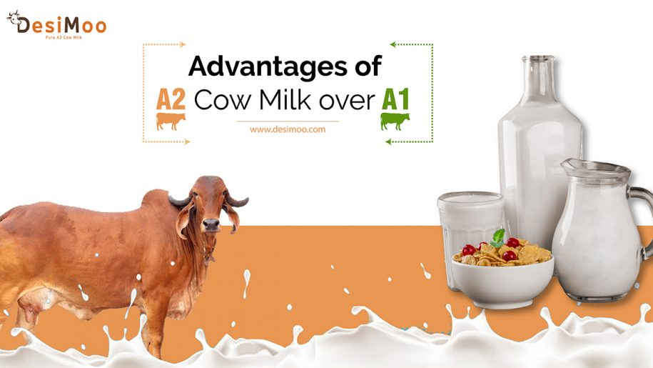Cow Milk Online in Gurgaon, A2 Desi Cow Milk In Gurgaon