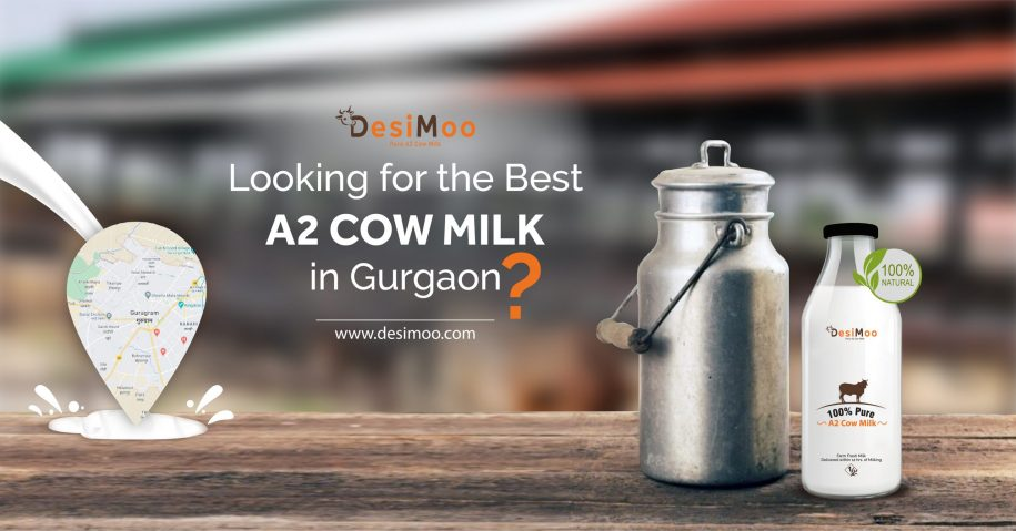 Best A2 Milk In Gurgaon